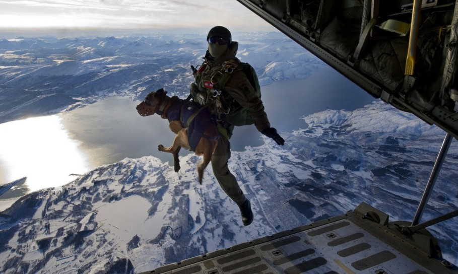 Skydiving with Special Ops Dog.