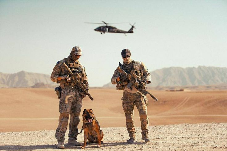 Australian Special Operations Task Group (SOTG)